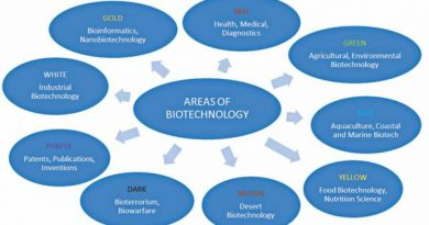Top Branches of Biotechnology and Job Scope in 2020