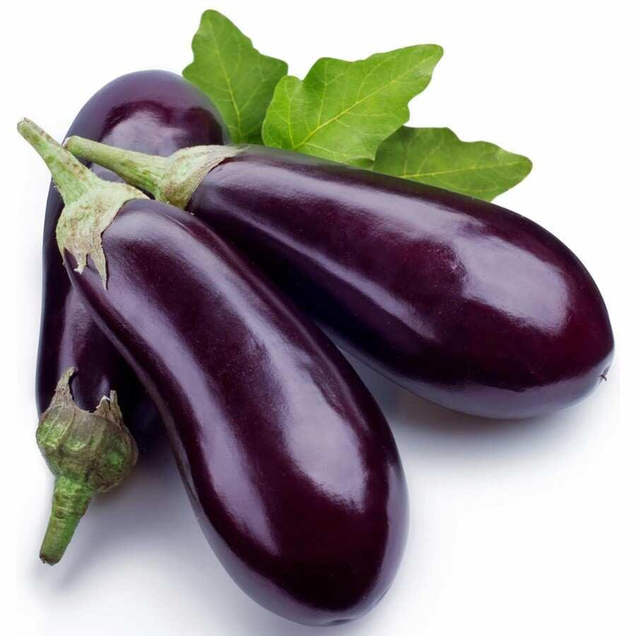 Modern Eggplant