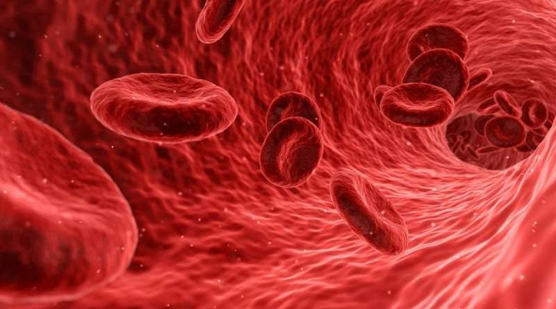 Treatment for Blood Cancer with CRISPR