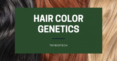 Human Hair Color and its Genetics