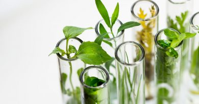 Application of Green Biotechnology